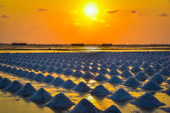 Sunset over the salt field in thailand Stock Image