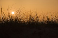 Sunset over sand dune Stock Image