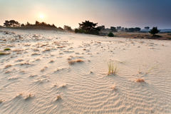 Sunset over sand dune Royalty Free Stock Images
