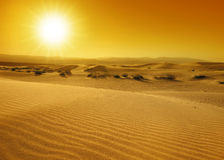 Sunset over the sand dunes Stock Photography