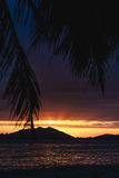Sunset over SanYa with coconut tree framing the sunset Royalty Free Stock Image