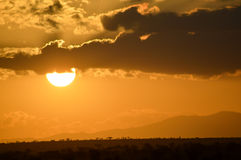 Sunset over the savanna Royalty Free Stock Photography