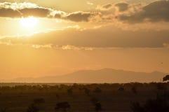 Sunset over the savanna Royalty Free Stock Photos