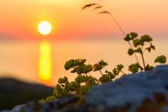 Sunset over the Sea of Azov on Generals beach. Karalar regional landscape park in Crimea. Stock Photo