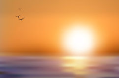 Sunset over the sea level Royalty Free Stock Photo