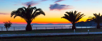 Sunset over sea with palm trees panorama Stock Photo