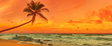 Sunset over the sea. Panorama Royalty Free Stock Photos