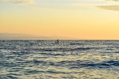 Sunset over the sea. Sap surfers on the horizon in the rays of sunset royalty free stock images