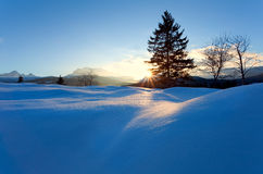 Sunset over snow hills in Alps Stock Images