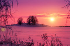Sunset over snowy field Royalty Free Stock Photography