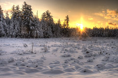 Sunset over Snowy Field Stock Photography