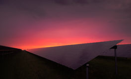 Sunset over solar panels Stock Photo