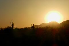 Sunset over The Sonoran Desert: Tonopah, Arizona. Saguaro Cactus Silhouette, Golden Hour, Tonopah Outback, West of Phoenix, Arid Landscape, Arroyos stock image