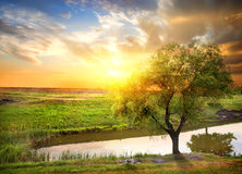 Sunset over spring river Stock Photography