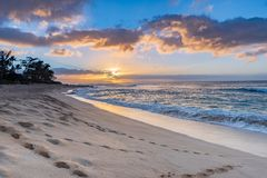 Sunset on Sunset Beach, Hawaii with palm trees and a sandy beach royalty free stock photography