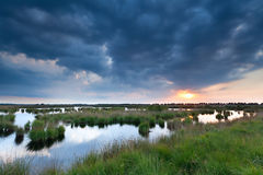 Sunset over swamp Royalty Free Stock Photo