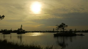 Sunset over swamp islands. Autumn daytime. Smooth dolly shot stock footage