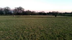 Sunset over the Tatton Park with herd of deer in background - Tatton Park Gardens Royalty Free Stock Photography
