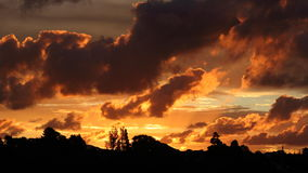 Sunset over Te Atatu Peninsula, Auckland, New Zealand. Dusk over the peninsula with orange coloured clouds and silhouetted trees Stock Photos