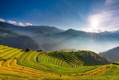 Sunset over Terraced rice field, Mu Cang Chai, Yen Bai, Vietnam