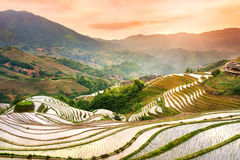 Sunset over terraced rice field in Longji, Guilin in China. Sunset over terraced rice field in Longji, Guilin area, China stock image
