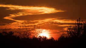 Sunset over the Trees and Clouds. Time Lapse. The bright red sun moves over the horizon and the clouds and hides behind the treetops. Full Hd 1920 x 1080p, 30 stock footage