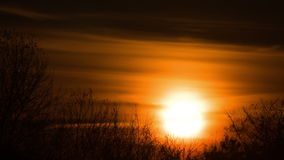 Sunset over the Trees and Clouds. Time Lapse. The bright red sun moves over the horizon and the clouds and hides behind the treetops stock video