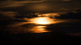 Sunset over the Trees and Clouds. Time Lapse stock video footage