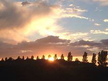 Sunset over trees. Sunset trees sky clouds Stock Photos
