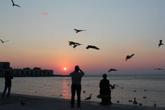 Sunset over Trieste, Italy Stock Photos