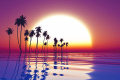 Sunset over tropic sea Royalty Free Stock Images