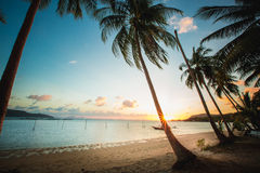 Sunset over the tropical beach Royalty Free Stock Image
