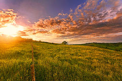 Sunset over Tuscany hills Royalty Free Stock Image