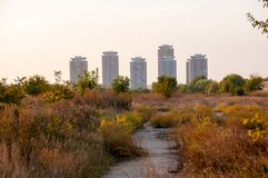 View of Vacaresti Nature Park area and city skyscrapers. Sunset over Vacaresti Nature Park and skyscrapers from Bucharest city, the capital of Romania Stock Photo