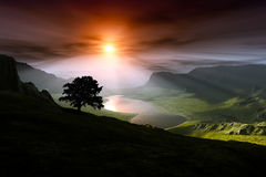 A sunset over a valley with a tree silhouette Stock Photo