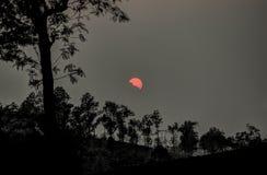 Sunset over Valparai, India Royalty Free Stock Photos