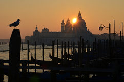 Sunset over Venice Stock Photography