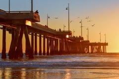 Sunset over Venice Beach Pier in Los Angeles, California - Birds stock photos