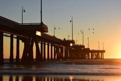 Sunset over Venice Beach Pier in Los Angeles, California - Birds stock photo
