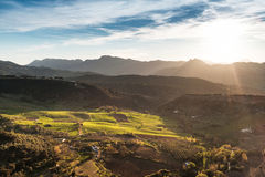 Sunset over vineyards. Rural agriculture land near Malaga, Spain, Andalusia Royalty Free Stock Photo