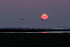 Sunset over the Waddensea Stock Photography