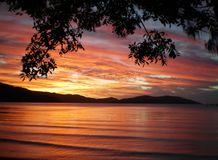Sunset over the water. Sunset over a bay. The picture is framed by the branches of a tree caught in silhouette, and hills form the backdrop. The colors are Stock Image