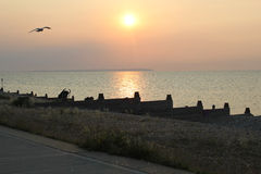 Sunset Over Whitstable Beach. Whitstable is famous for it's stunning sunsets and this photo shows a sunset just as spectacular over Whitstable beach Royalty Free Stock Photo