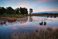 Sunset over wild lake Royalty Free Stock Photo