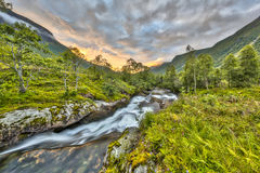 Sunset over wild river through birch forest in Norway Stock Images