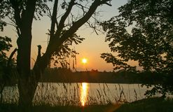Sunset on Wilderness Lake. Sunset over wilderness lake framed by trees Royalty Free Stock Images