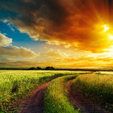 Sunset over winding road in field Royalty Free Stock Image