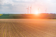 Sunset over the windmills Royalty Free Stock Photos