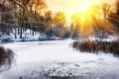 Sunset over winter forest lake royalty free stock photography