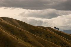 Sunset over Wither Hills. In New Zealand Royalty Free Stock Photos